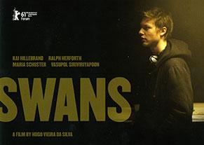 swans-leaflet-mini